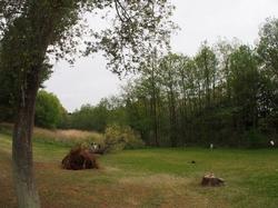 倒れた木と子供たち (1) (640x480).jpg