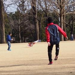 公園 凧揚げ (2).jpg