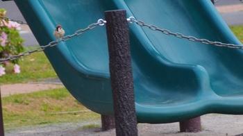 公園のスズメ.jpg
