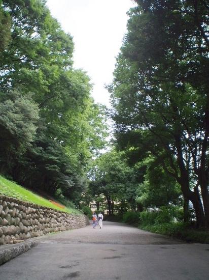 旧岩崎邸入口へ.jpg