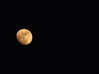 月 (1).jpg