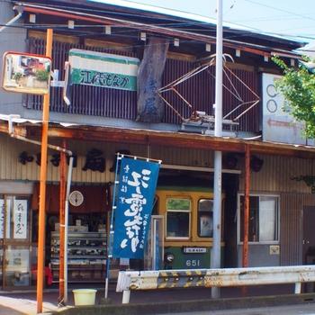 江の島撮り歩き (1).jpg