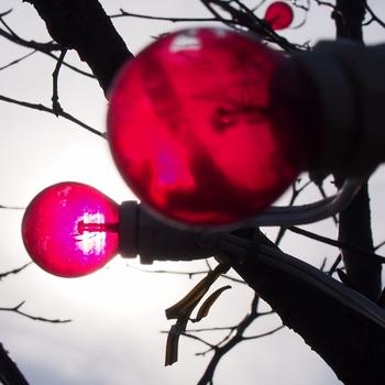昼間の電球