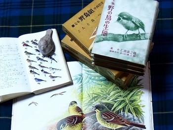 野鳥の本いろいろ