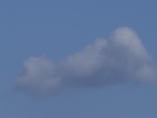 12/22雲