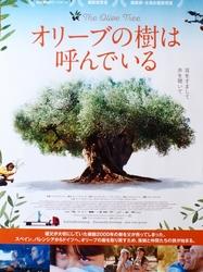 映画・オリーブの木は呼んでいる.jpg