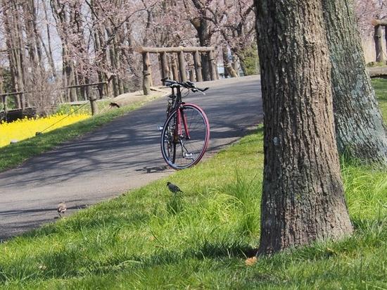 自転車のある風景.jpg
