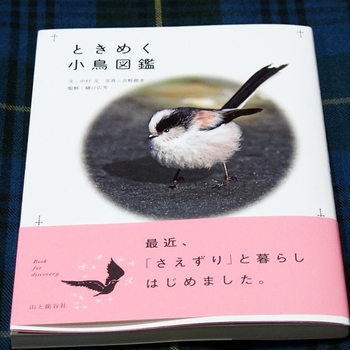 ときめくコトリ図鑑